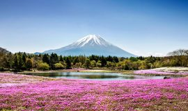 Du lịch Nhật Bản nên đi đâu?
