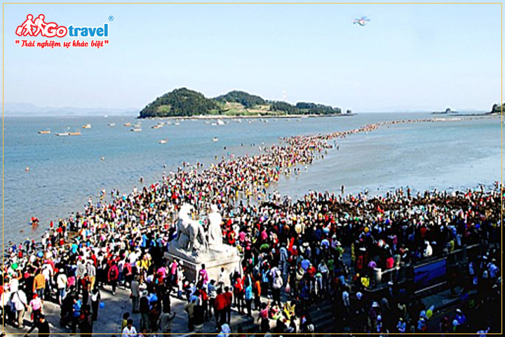 Lễ hội đường biển kỳ diệu Jindo